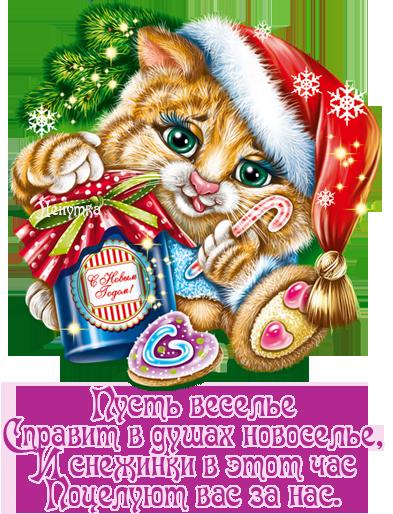 s-novyim-godom-pozdravleniya-v-stihah_NG5
